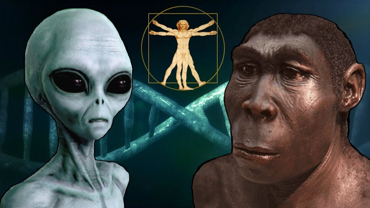Professor: UFOs, aliens are human anthropologists from future