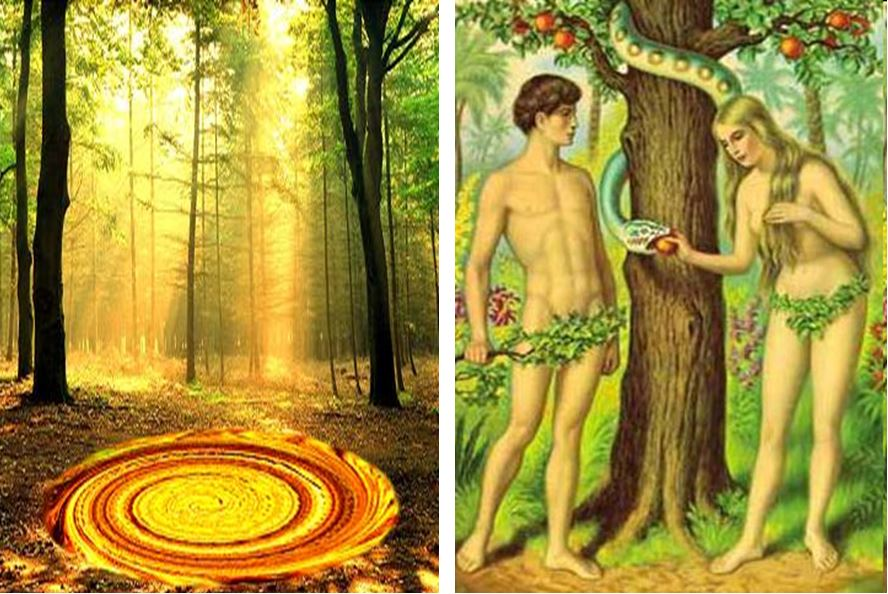 Paradise Adam Eve, Is our universe at the bottom of a black hole?