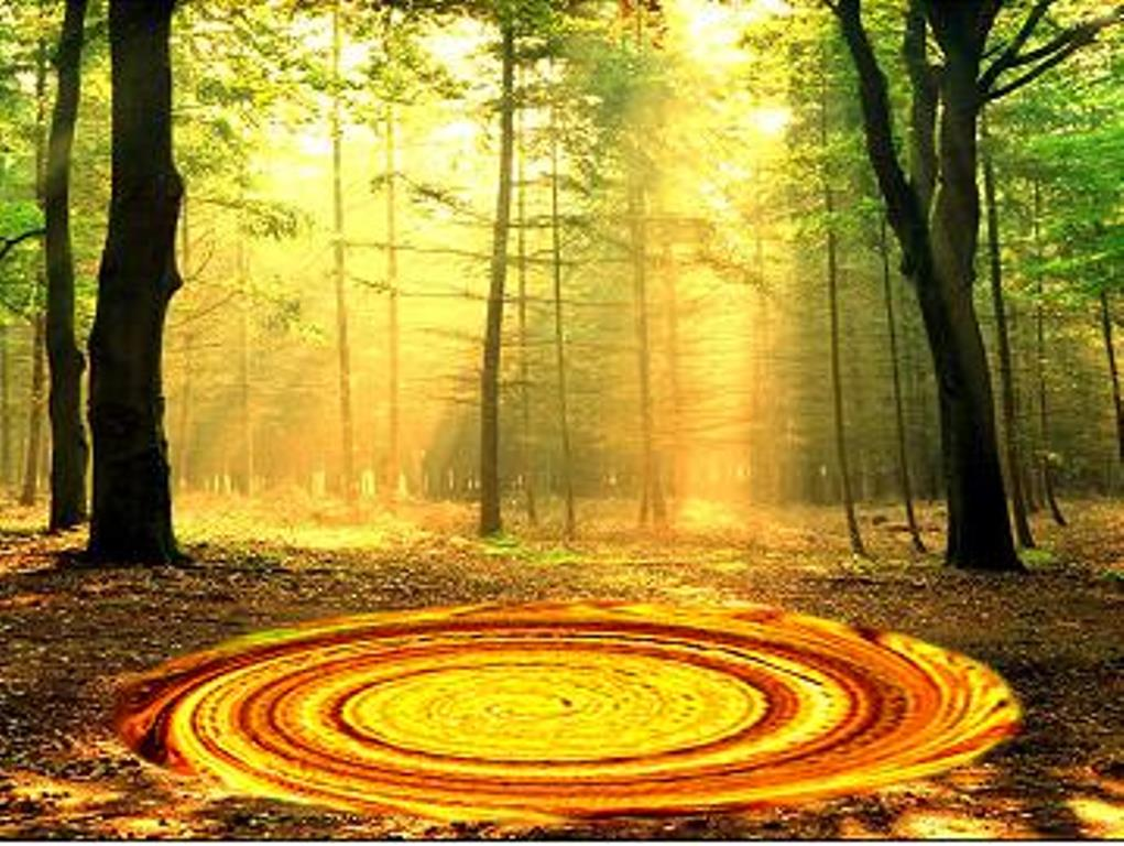 Paradise-the forbidden tree, Is our universe at the bottom of a black hole?