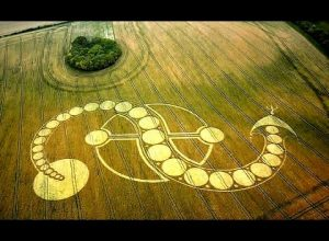 WHAT IS THE REASON BEHIND CROP CIRCLES?